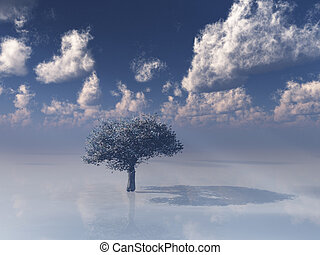 Single tree in white with sky