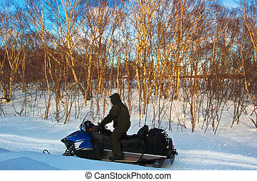 snowmobile - Man on snowmobile in the bighorn mountains,...