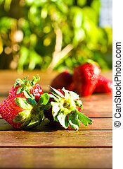 strawberries on sunny day