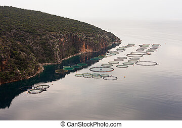 Offshore open sea fishfarm - Aquaculture in calm bay...