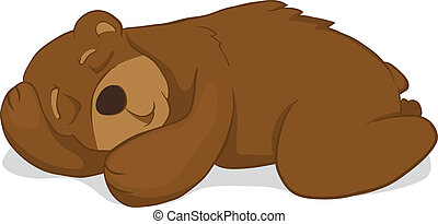Sleeping bear Isolated on white background