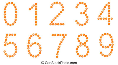 Numbers from orange slices isolated on white - Number 0, 1,...