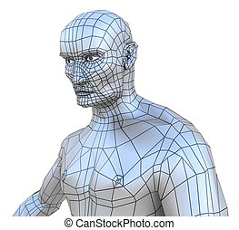 Human male mesh torso with head isolated on white