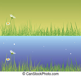 Field grass. Day and evening
