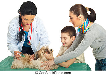 Doctor vet vaccine puppy dog and his family holding against...