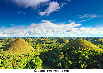 Chocolate Hills - View of The Chocolate Hills. Bohol,...
