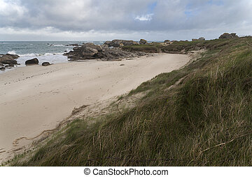 Forces of the nature 1 - Moving coast with sand drifts near...