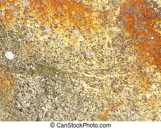 yellow and copper stone wall