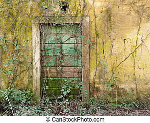 Forgotten doorway - Untended and overgrown with brambles...
