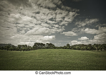 toned - Toned panoramic view of nice green hill on sky...