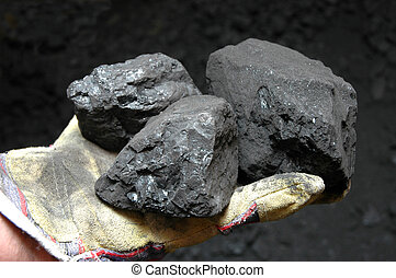 Mine - Black coal in mine- in miner's hand