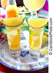 tequila salt lemon alcohol mexican drink beer and margarita...