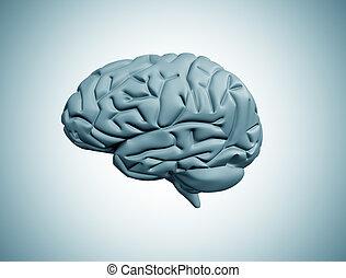 The Human Brain - Abstract brain illustration