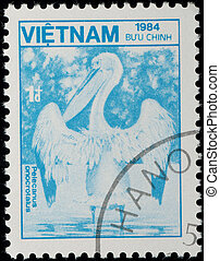 ペリカン, 切手,  -,  1984:, ベトナム, 動物, 野生, ∥ころ∥, 鳥