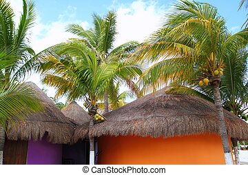 Tropical Caribbean Palapas hut coconut palm trees
