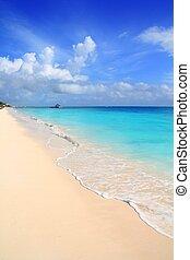 藍色, 綠松石, 加勒比海, 天空, 熱帶, 海灘