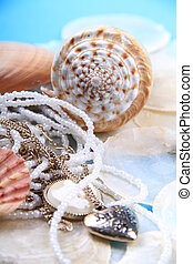 jewellery shells - shells and pearl jewellery together with...