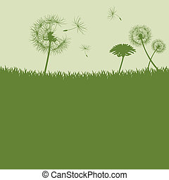 Dandelion seeds background - Illustration vector