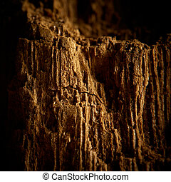 Old wood cracked texture Closeup shot, shallow depth of...