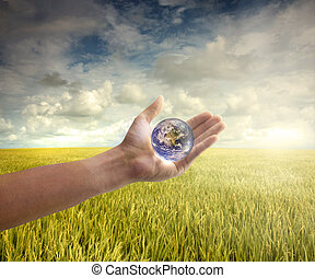 mother earth - enviroment concept photo hand holding globe...