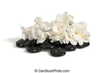 thalassotherapy - Rocks, flowers, fans and towels on white...