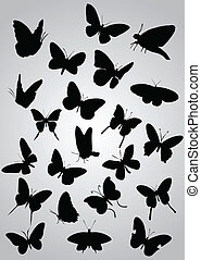 Butterfly silhouette, vector illustration