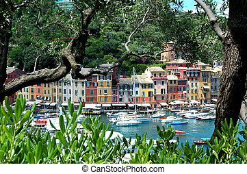 Portofino - The colorful houses of Portofino seen from among...