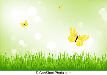 Green Grass And Yellow Butterflies - Nature Background,...