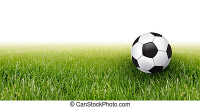 soccer ball and grass
