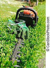 Hedge Trimmer. - Hedge Trimmer and gloves.