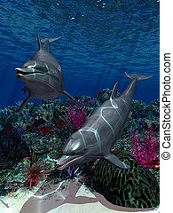 Oceanworld 1 - two dolphins swim in the ocean