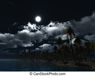 Paradise 1 - a small dream island by night in the moonlight