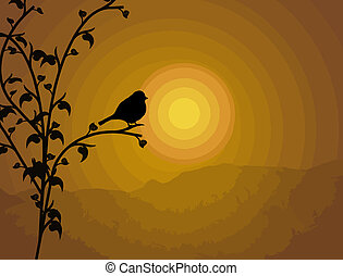 Bird on branch - vector silhouette bird on branch on sunset...