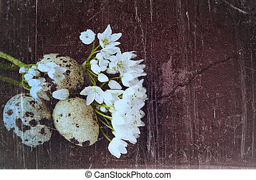 grunge bird eggs