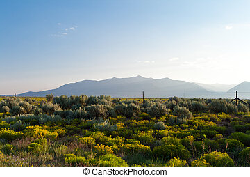 High Desert Sangre De Cristo Mountains NM USA - Morning on...