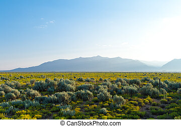 Sangre De Cristo Mountains Sunrise Desert NM - Sangre De...