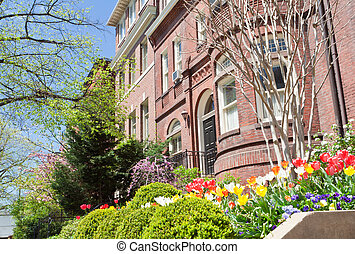 Spring Flowers Richardsonian Romanesque Row Houses - Spring...