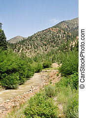 Stream Sangre De Cristo Mountains New Mexico USA - Mountain...
