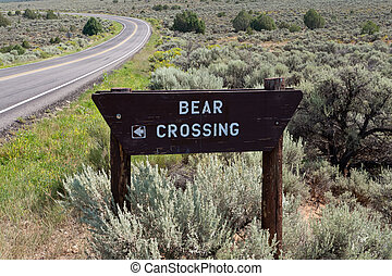 Bear Crossing Sign Road in New Mexico Sagebrush