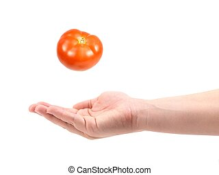 Catching Fruit - A female hand catching a tomato isolated...