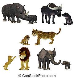 toon safari - a cute toon safari - isolated on white