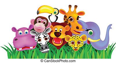 Cartone animato immagini di archivi di illustrazioni 1 - Animale cartone animato immagini gratis ...
