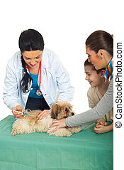 Family with puppy at vet preparing for vaccination isolated...