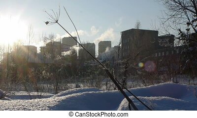Urban landscape in a cold winter day with smoking pipes