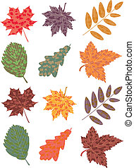 vector set of colorful autumn leaves