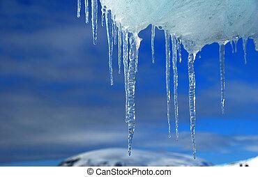 icicles antarctica - frozen ice in antarctica, blue sky