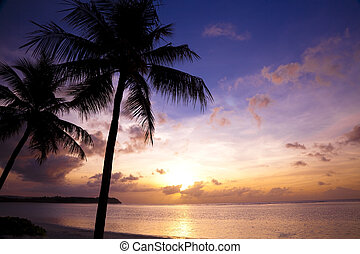 Beautiful sunset on the tropic beach and coconut palms