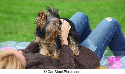 unidentified woman lying and stroking Yorkshire terrier on green grass