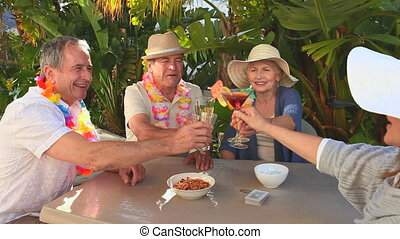 Mature friends taking an aperitif