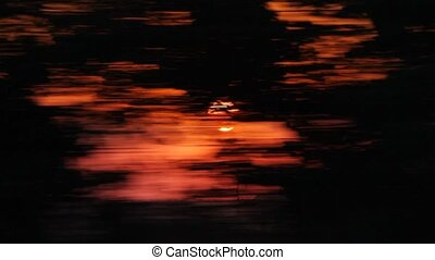 red sun flickering behind the trees, view from fast moving train